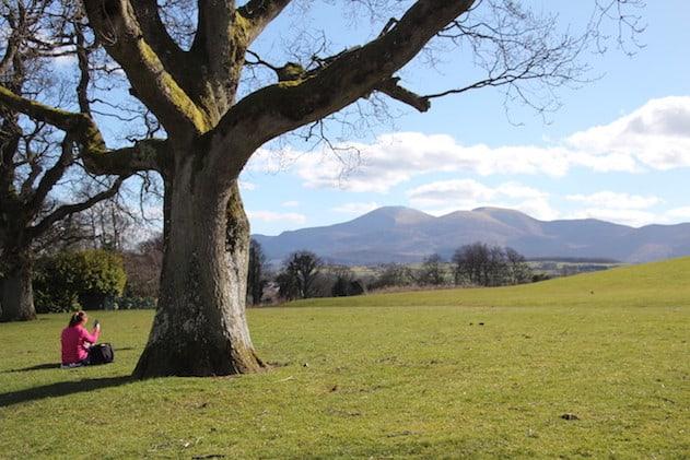 Castlewellan Park and Peace Maze