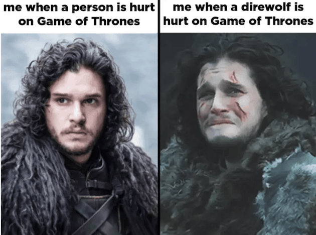 Game of Thrones Funniest meme ever