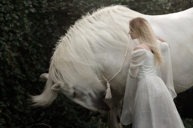 Niamh, the Fairy Queen of Tir Na nOg.