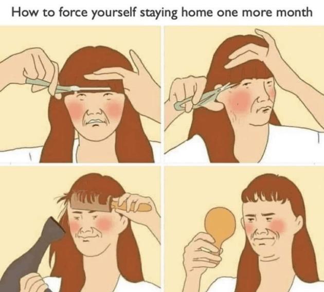 Meme Cut your own Hair Searches Corona Virus Lockdown